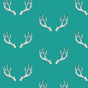 Whitetail deer antlers in teal