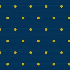 Small Navy Denim Polka Dots