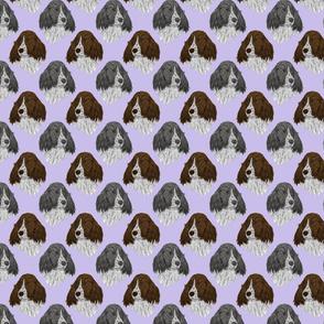 English Springer Spaniel faces - purple