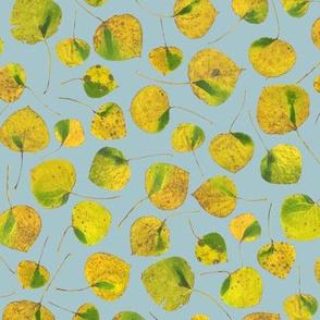 small aspen leaves on pale slate blue