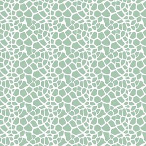 Mint and White Giraffe Print