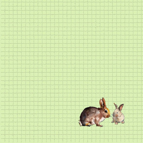 Egg Bunny top