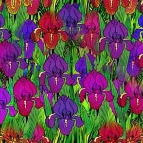 flowers_irises_in_the_garden