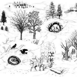 Winter in the Forest Toile