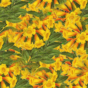 flowers_yellow_from_clipart