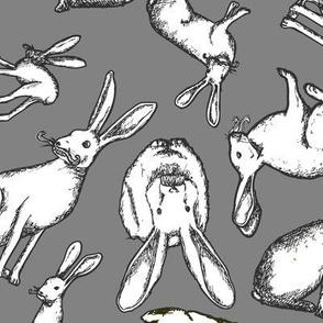 Mr. Jack Rabbit - Large Grey