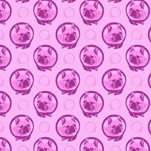 Collared French Bulldog portraits - pink
