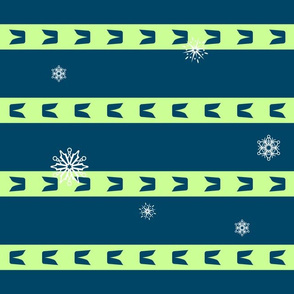 Seattle Sport Stripes and Snowflakes
