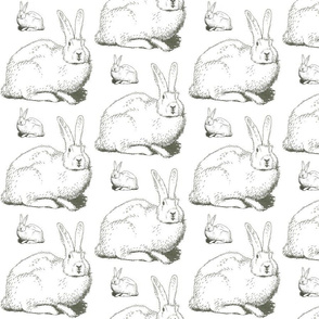 Big Bunny, Little Bunny