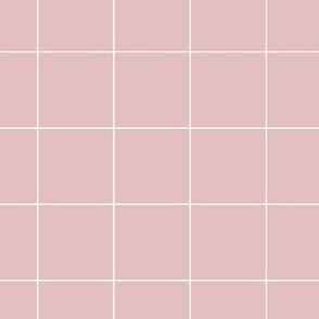 dusty pink grid | pencilmeinstationery.com
