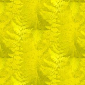 Sunprint Fern