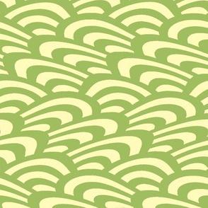 wavy scallop in green tea