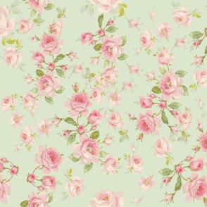 Saint Colette June Roses in basil