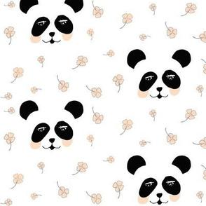 Lucky panda coral