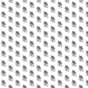 Cypress Flowers White Print
