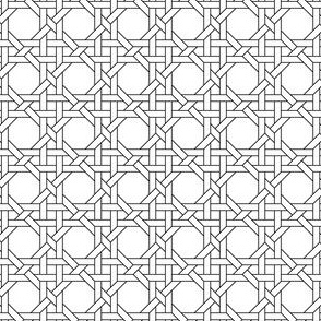 03829022 : octagon weave