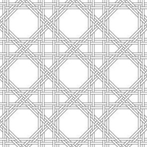 03829024 : octagon double-weave