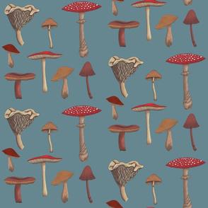 Mushroom Madness Two