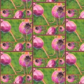Rose Hip Collage