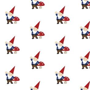 Just Gnomes - Boy