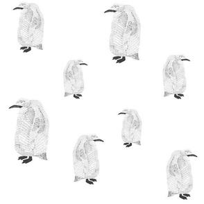 penguin black on white