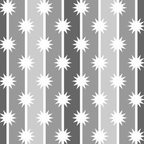 03850169 : starstripe : greyscale