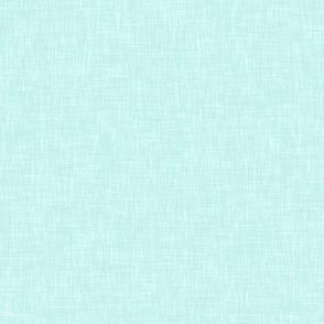 Solid Linen in Light Aqua