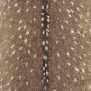 Deer Hide Fabric and Wallpaper in Taupe