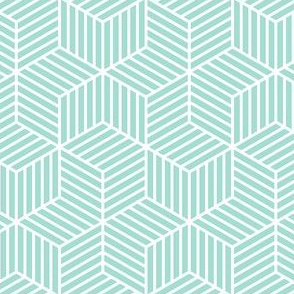 03900069 : chevron 6 bars : mint