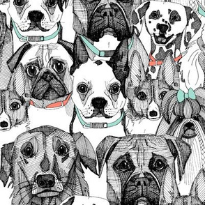 just dogs coral mint