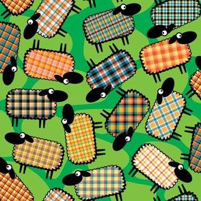 Sheeplaid