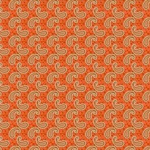 ditsy paisely orange