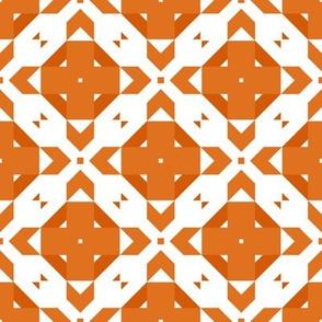 Funky Geometric ~ Many Oranges