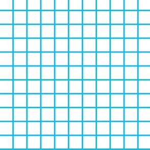 "3/4"" Blue Grid Paper Print"