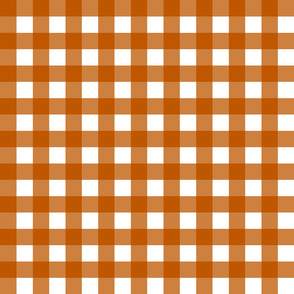 Spiced Pumpkin  and White ~ Gingham