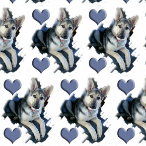 gsd_fabric_two