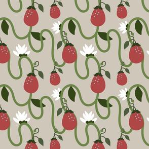 strawberry plants flowers
