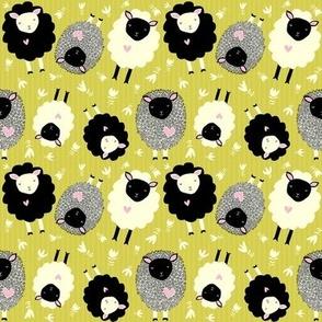 itsy bitsy ditsy sheep