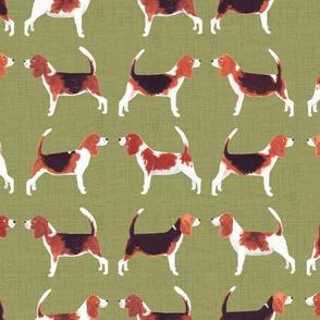 Beagle Meets Beagle | Green