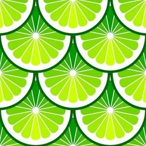 03978903 : citrus scales : limey