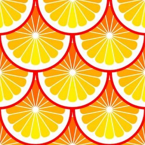 03978904 : citrus scales : orange