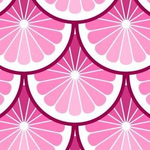 03978922 : citrus scales : FF0080