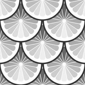 03978923 : citrus : greyscale