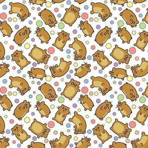 Hamsters!