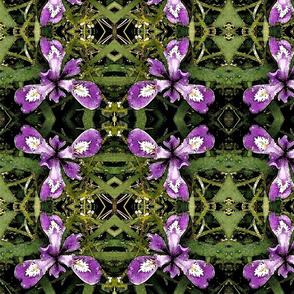 Pacific-iris-7in-fabric-150-wtrclr