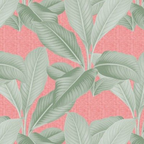 Palm In Palm ~ Sage on Coral Linen Luxe