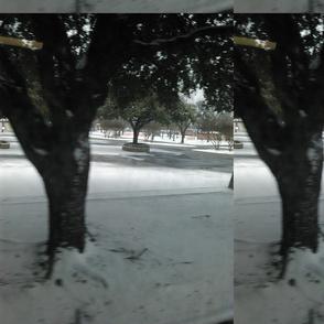 Winter Day 2