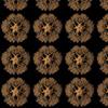 401457-haeckel-ophiodea-gorgonocephalid-by-esmeralda_m