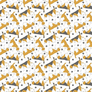 Trotting Beagles and paw prints - white