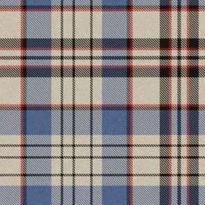 Blueberry in Oatmeal Plaid